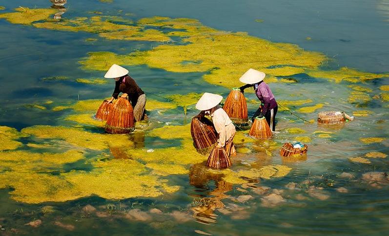 Vietnam Photo Tours - Capture real colourful life