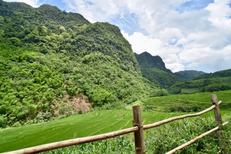 AVD-03 (8Days-7Nights) ADVENTURE PU LUONG NATURE RESERVE