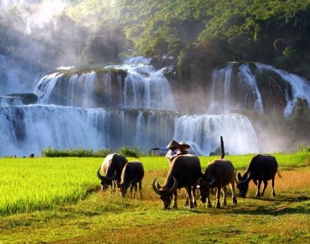 POPULAR VIETNAM TOURS